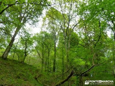 Ruta del Cares - Garganta Divina - Parque Nacional de los Picos de Europa; amigos madrid